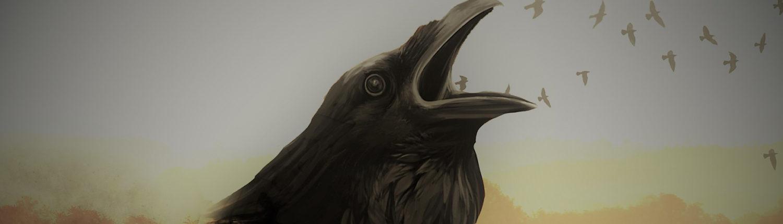 big-raven
